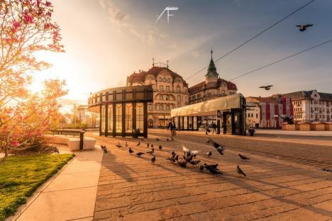 Fără câştigător! Juriul a respins toate cele 180 de propuneri pentru logo-ul municipiului Oradea