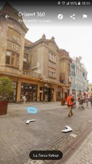 Caz revoltător în Oradea: o pisică a murit după ce a fost lovită cu sălbăticie și aruncată de la etaj, Poliția caută autorul (FOTO)