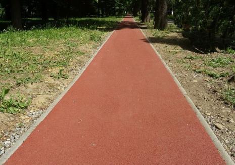 Primăria Oradea licitează realizarea unei piste de alergare din tartan în Parcul Salca