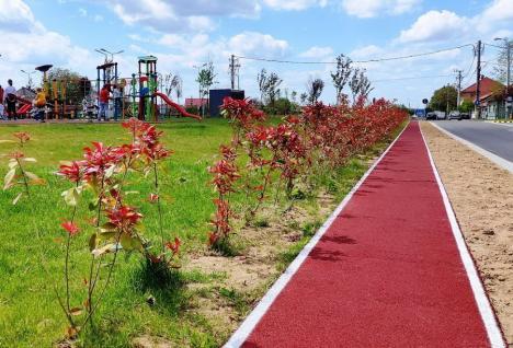 O nouă pistă de alergare în Oradea: A fost dată în folosinţă cea de 2,2 kilometri care înconjoară coridorul verde Barcăului