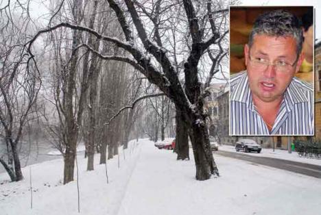 Pasztor Şandor, şeful Administraţiei Bazinale Crişuri: La revedere, plopilor!