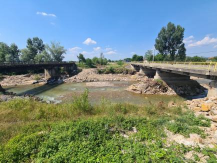 """Dezastru ecologic în urma exploatărilor ilegale de balast din Crişul Negru! Trezită din """"somn"""" de BIHOREANUL, ABA Crişuri promite patrule permanente (FOTO / VIDEO)"""