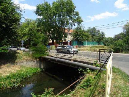 Altul mai trainic! Podul peste Peţa de la Universitate va fi demolat şi înlocuit cu unul nou