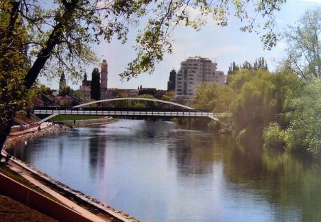 Lucrările la podul Centenarului închid circulaţia pe o porţiune a străzii Principatelor Unite