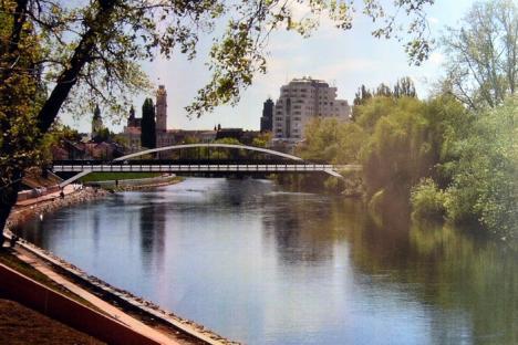 9,6  milioane lei. Podul Centenarului va fi construit de o asociere din care fac parte firmele Freyrom şi Procons Group