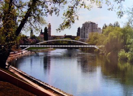 Cinci asocieri de firme se bat pe lucrările de construire a podului Centenarului