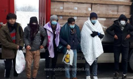 Descoperire în Bihor: Șase cetățeni afgani, ascunşi într-un camion, printre seminţe de floarea-soarelui (FOTO / VIDEO)