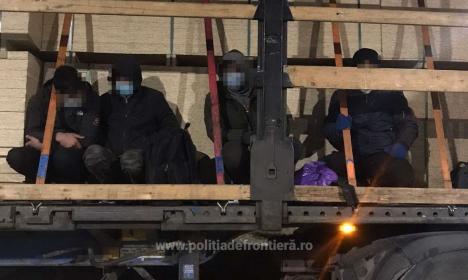 27 de migranți din Siria și Palestina, prinși de polițiștii de frontieră în Șimian (FOTO / VIDEO)