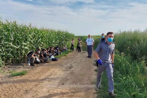 14 irakieni şi sirieni au pornit spre jos spre Ungaria, dar au fost prinşi de poliţiştii bihoreni