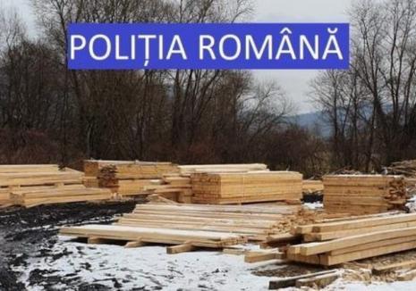 Rezultatele percheziţiilor făcute la hoţii de lemne: S-a confiscat material lemnos fără acte de peste 130.000 lei (FOTO)