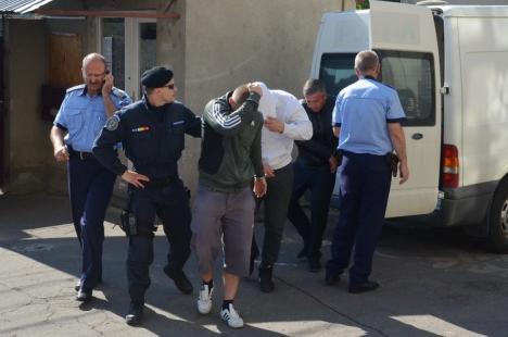 Spaima şoferilor: Cinci poliţişti de la Salonta au fost reţinuţi pentru şpagă