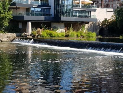 Poluare pe Crişul Repede, în centrul Oradiei: O spumă suspectă a apărut pe cursul râului (FOTO)