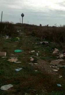 Poftim civilizaţie! Drumurile de la marginea satului Tămașda, pline de gunoaie (FOTO / VIDEO)