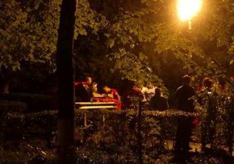 Pompier rănit în timp ce tăia un arbore căzut după furtună în Oradea (FOTO)