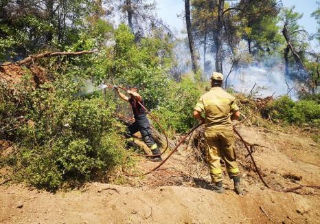 Pompierii români aflați în misiune în insula Evia, lăudaţi de greci: 'Viteza, organizarea, meticulozitatea şi reflexele sunt uimitoare'