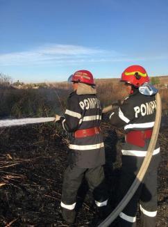 Nu vă jucaţi cu focul! Opt incendii de vegetaţie uscată, într-o singură zi (FOTO)