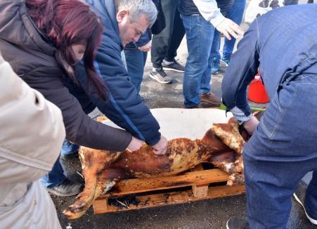 Bihorel: Şapte posibile locaţii pentru festivalul D'ale Porcului