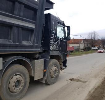 Ne enervează: Curţile şi casele sătenilor din Subpiatră sunt 'înecate' în praf (FOTO)