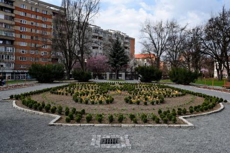 A venit primăvara! Oradea s-a umplut de culoare şi mireasmă (FOTO)
