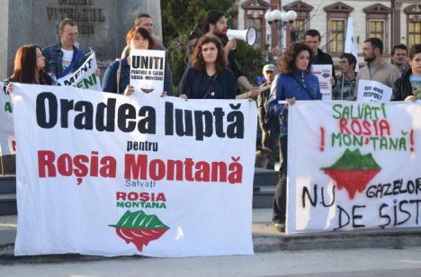 Deputaţii au respins legea privind exploatarea minieră de la Roşia Montană