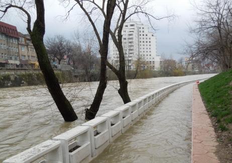 Cod galben privind posibile inundații locale pentru Crișurile din Bihor