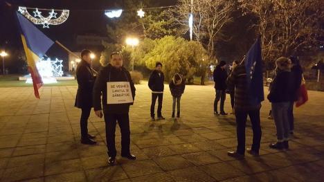 Ajun de Crăciun în stradă: Circa 20 de orădeni au protestat în Parcul 1 Decembrie (FOTO)