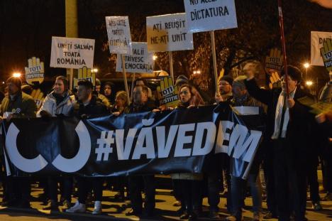 Oradea Civică 2.0: Protestatarii din Asociaţia Oradea Civică s-au rupt în două