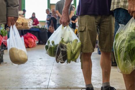 Guvernul a decis: Din vară, vor fi interzise pungile din plastic subţire cu mâner