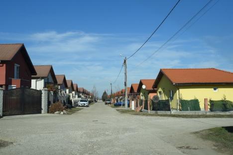 Pute la Orizont! Sub nasul autorităţilor, afaceristul Călin Raita a făcut un cartier în care, de 10 ani, dejecţiile se varsă în câmp (FOTO / VIDEO)