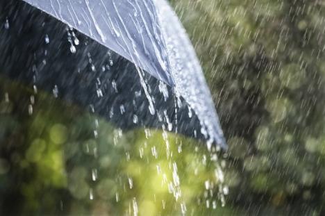 Ploi şi vânt: Cod galben de vreme severă în Bihor