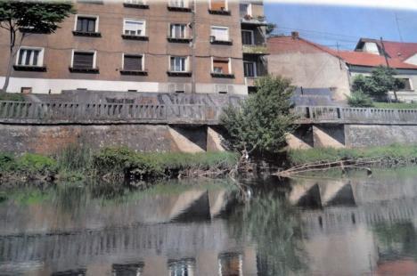 Încă un şantier în centrul Oradiei: Începe reabilitarea malului Crişului Repede pe tronsonul din dreptul Primăriei (FOTO)
