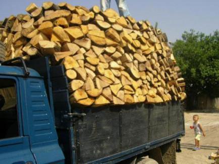 Prinşi că exportau lemne de foc cu acte falsificate