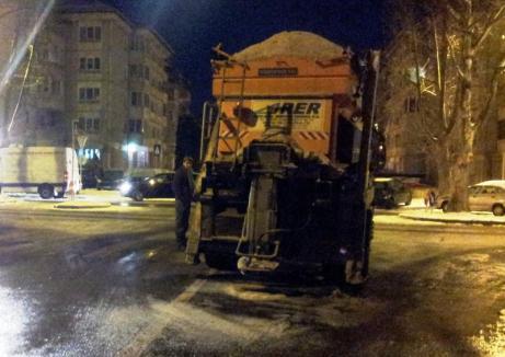 La datorie: RER Vest, primele intervenţii de combatere a poleiului în Oradea, în acest sezon