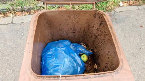 Selectiv şi nu prea: Regula colectării separate a biodeşeurilor este încălcată de mulţi orădeni (FOTO)