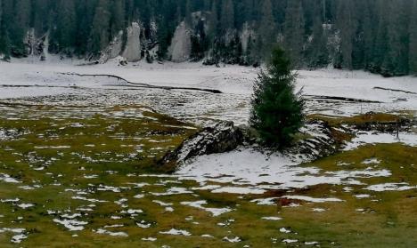 Copil cu fractură de tibie, salvat de salvamontiştii bihoreni în Vârtop. Atenție, zăpada nu este bună pentru săniuş! (FOTO)