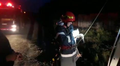 Pui de barză căzut din cuib, salvat de pompierii bihoreni (FOTO / VIDEO)