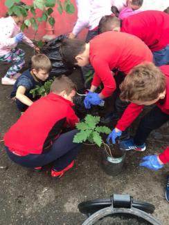 Let's Get Green: Elevii de la Şcoala 11 au plantat 100 de puieţi de arbori (FOTO)