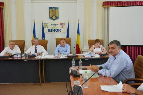 Schimbare de tactică: Din opoziţie, liberalii au aprobat majoritatea propunerilor executivului în Consiliul Judeţean (FOTO)
