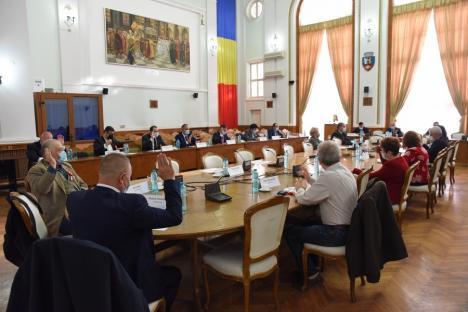 Constituirea consiliilor locale