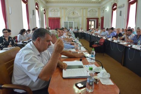 Şefii PSD, UDMR şi ALDE din Consiliul Judeţean şi-au 'premiat' primarii: 'Banii se împart prin vot politic' (FOTO)
