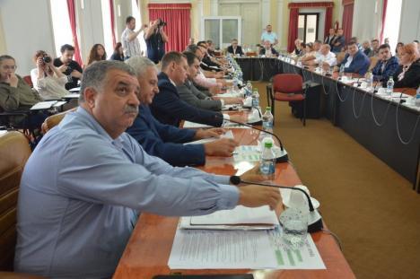 Pace la Consilul Judeţean: După ce au refăcut majoritatea UDMR-PSD-ALDE, liberalii au votat 34 din 39 de proiecte ale puterii (FOTO)