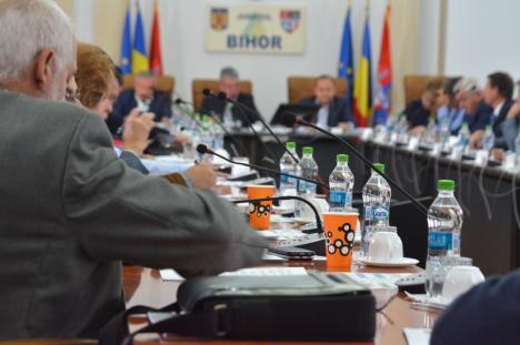 'Semănaţi cu Guvernul Dăncilă': Liderul opoziţiei le reproşează şefilor Consiliului Judeţean că au rămas în urmă cu investiţiile în drumuri (FOTO)