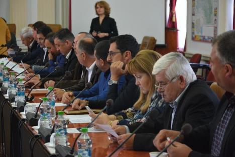 Din scandal în scandal: Şedinţa de marţi a Consiliului Judeţean a eşuat. Liberalii n-au vrut să voteze validarea noului consilier PSD (FOTO/VIDEO)