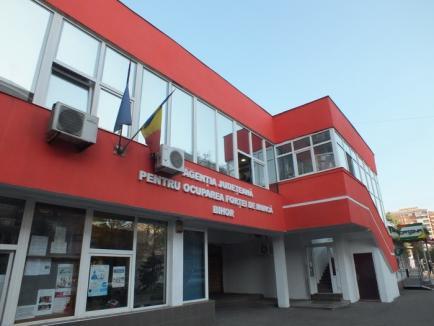 AJOFM Bihor dă startul la 11 cursuri de calificare pentru şomeri