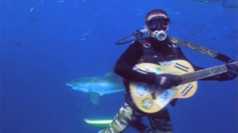 Un bărbat s-a pus să cânte la chitară între rechini (VIDEO)