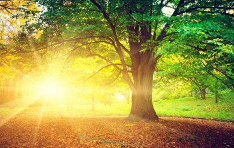 O toamnă călduroasă: Meteorologii prognozează temperaturi mari pentru luna septembrie, dar şi fenomene periculoase