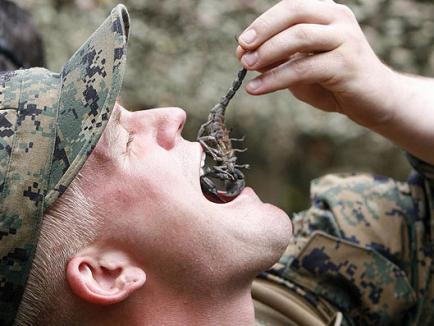Şopârle crude şi sânge de cobra, doar pentru soldaţi
