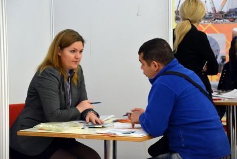Vrei să te angajezi? Peste 700 de locuri de muncă vacante în Bihor
