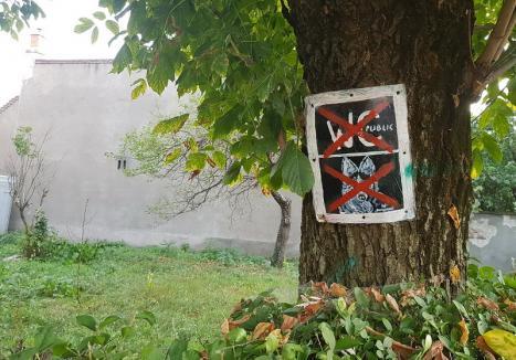 Peste 800 de asociaţii de proprietari din Oradea au semnat protocoalele de îngrijire a spaţiilor verzi