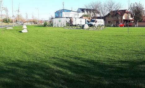 Terenul viran din strada Barcăului a fost amenajat ca spaţiu verde (FOTO)